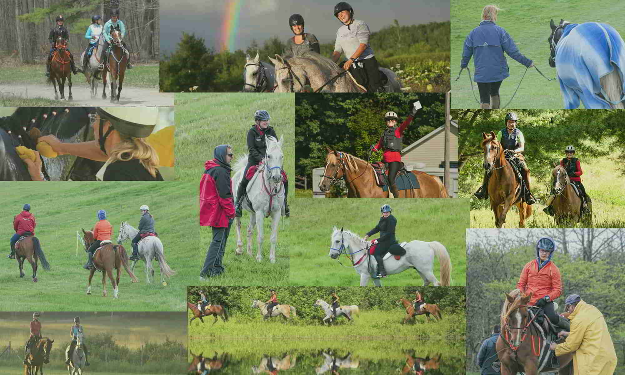 Ontario Competitive Trail Riding Association
